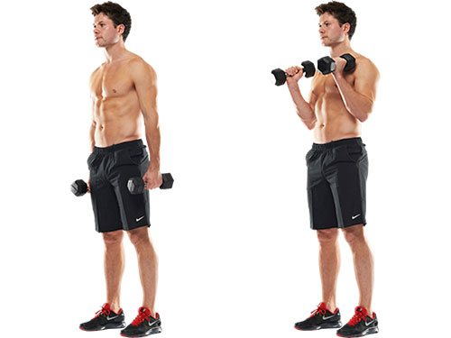 One Arm Standing Dumbbell Hammer Curl | Weight Training Exercises 4 ...