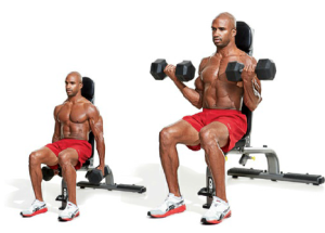 seated-curl-dumbbells-exercises