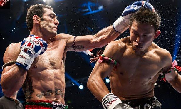 Muay thai gloves boxing