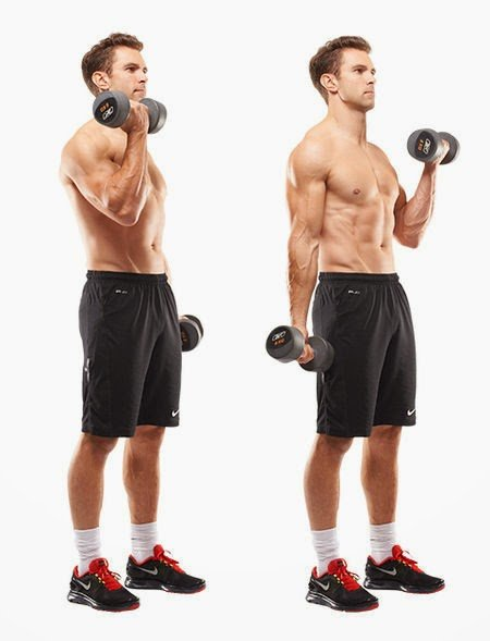 Body weight biceps curls