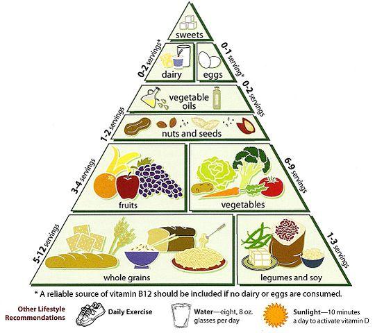 Essential Nutrients Food Pyramid