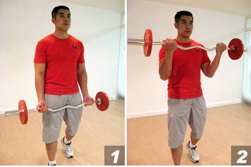E-Z Bar Bicep Curls