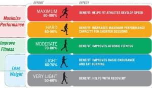 Fat Loss and Conditioning
