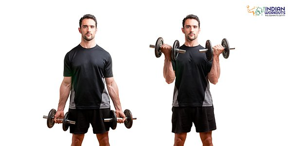 Standing Curls for Biceps