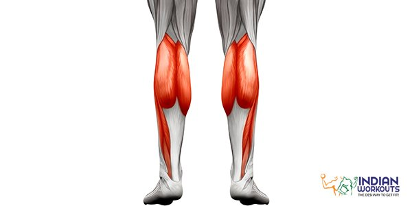 calf-muscles-known-as-the-second-heart