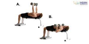 dumb-bell-flat-bench-press